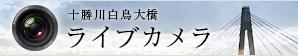 十勝川白鳥大橋ライブカメラ